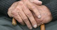 Следственный комитет начал в Омске проверку факта избиения детей пенсионером