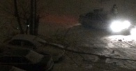 Ночью в Омске трое парней на иномарке врезались в дерево и повалили его на другую машину
