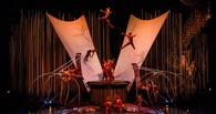 Омский цирк не сможет принять «дю Солей»