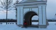 В Омске ищут в дар елку для Городского катка