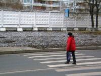 В Омске дальнобойщик из Кургана на «КамАЗе» сбил 10-летнюю девочку