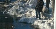 В Омске мальчик решил половить рыбу из лужи