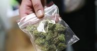 В Омске мужчина спрятал 3 кг марихуаны в снегу в жилом районе