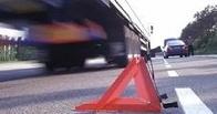 В ДТП в Омской области погиб водитель без прав