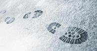 Следы на снегу помогли омским полицейским раскрыть кражу