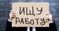 Бедным омичам готовы платить 50 тысяч рублей за поиск работы