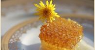 В Омской области подростки украли улей, чтобы полакомиться медом
