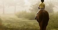 В Омске детей с ДЦП будут лечить общением с лошадьми