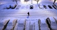 Как Омск встретил снежное утро: комментарии омичей о дорогах