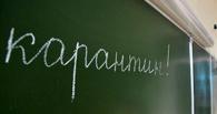 В Омске из-за гриппа на карантин начали закрывать школы и детские сады