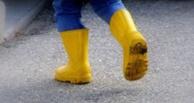 В Омской области пропал 10-летний мальчик