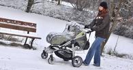 Омичка с помощью своего младенца угнала чужую коляску