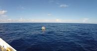 Американец попытался пробежать по океану от Флориды до Бермуд