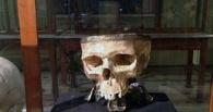 В Омске могут найти череп казахского хана