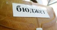 Омские депутаты назвали бюджет грустным, но проголосовали за него