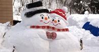 Аномальные морозы до 40 градусов задержатся в Омской области до Дня Валентина