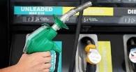 В Омске в колонии водитель отделался штрафом за кражу казенного бензина