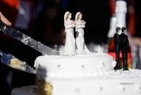 Бразилия в обход парламента легализовала однополые браки