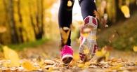 В первый выходной октября в Омске проведут День ходьбы