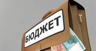 Бюджет Омской области оказался одним из самых открытых в России