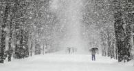 Синоптики прогнозируют метель и резкую перемену температур в Омске