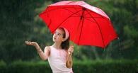 На выходные омичей ждет жаркая дождливая погода