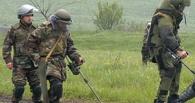 На омских дачах нашли осколочный снаряд от миномета