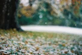 Омские синоптики прогнозируют снегопады с 22 октября