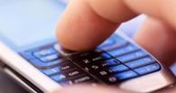 Омичка с помощью мобильного банка присвоила себе 8 000 рублей