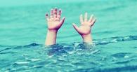 Под Омском утонул 11-летний мальчик