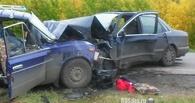 В Омске вынесли приговор водителю, по вине которого погибли пенсионеры