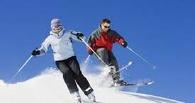 В Птичьей гавани могут открыть кафе для лыжников