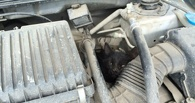 Омич 2,5 часа спасал кота из-под капота собственного авто