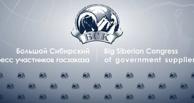 Сибирь — «ЗА» прозрачную систему госзаказа