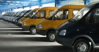 В Омске не выехали на маршрут 25 микроавтобусов