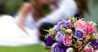 Купить шорты в ЗАГС, или ТОП поисковых запросов омичей про свадьбы