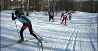 В заповеднике Омска откроют лыжный сезон