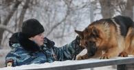 В Омской области на службу к полицейским заступили новые щенки