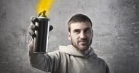 В Омске 18-летнего парня подозревают в разжигании межнациональной розни