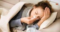 В Омске свиным гриппом заболели 72 человека
