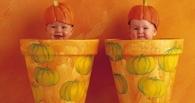 Настоящий беби-бум: в Омской области родились 252 пары двойняшек