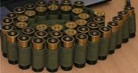 В Омской области дома у главы Саргатского района нашли охотничий арсенал