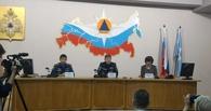 МЧС: В Омске уменьшилось число пожаров из-за фейерверков