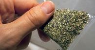Омские наркополицейские задержали создателей сети по сбыту синтетических наркотиков