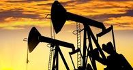 Ждем укрепления рубля: цены на нефть поднялись до 33 долларов за баррель