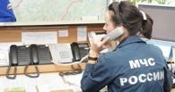 Пожарным Омской области поступило 228 ложных вызовов от детей и взрослых