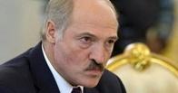 Лукашенко посоветовал должникам ловить и продавать диких уток