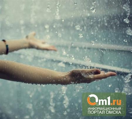 Улицы Омска оросило первым дождем