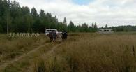 Заблудившегося в тайге на севере Омской области подростка ищут с вертолёта