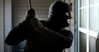 Омских грабителей поймают с помощью химических ловушек